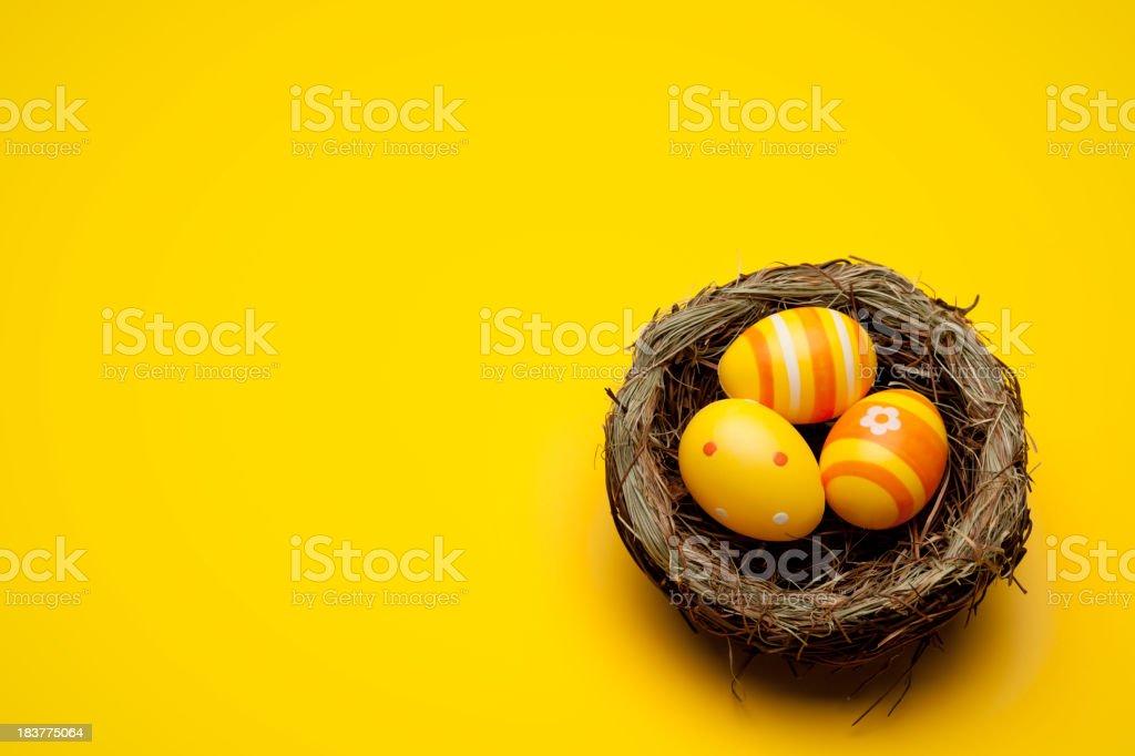 Yellow easter eggs stock photo