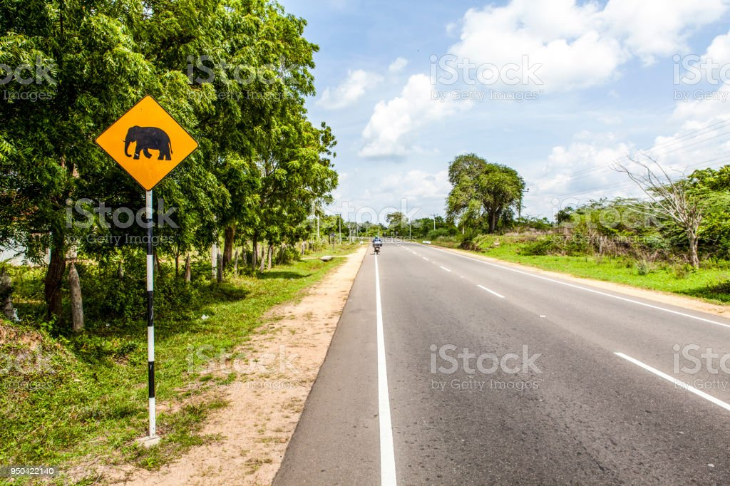 Yellow elephant warning sign along a road in Asia stock photo