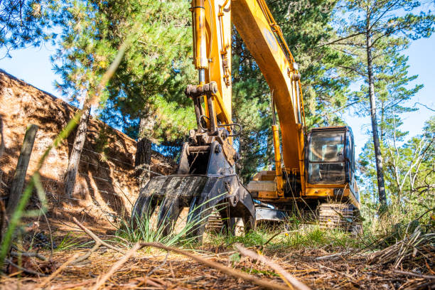 Yellow excavator in the grass under trees - low angle view Yellow excavator in the grass under trees - low angle view abridgment stock pictures, royalty-free photos & images