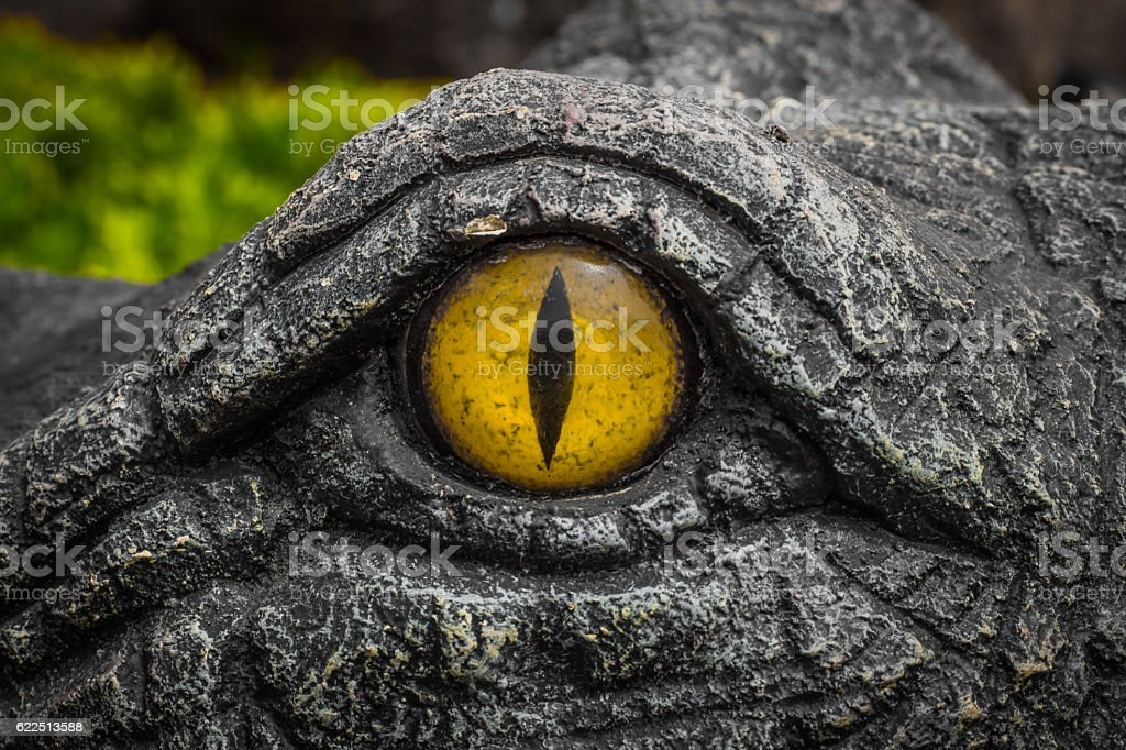Yellow eyes of crocodiles. stock photo