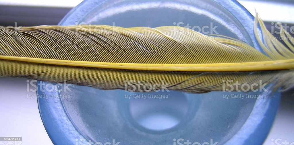 Yellow Feather Blue Vase royalty-free stock photo