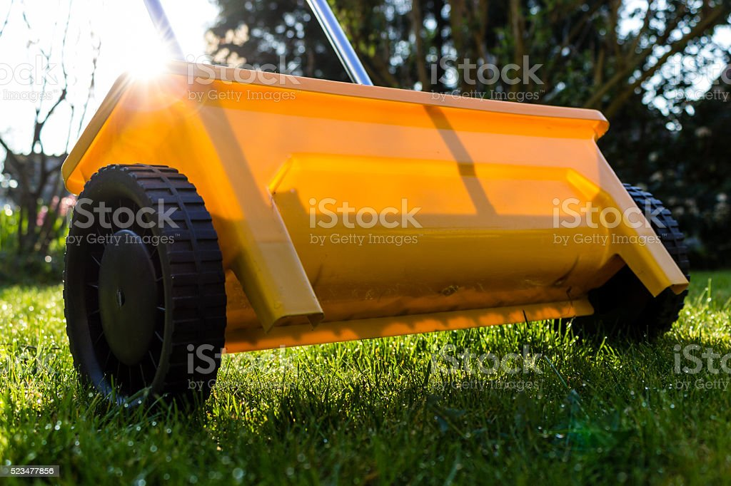 Gelbe düngen Rasen im Garten – Foto