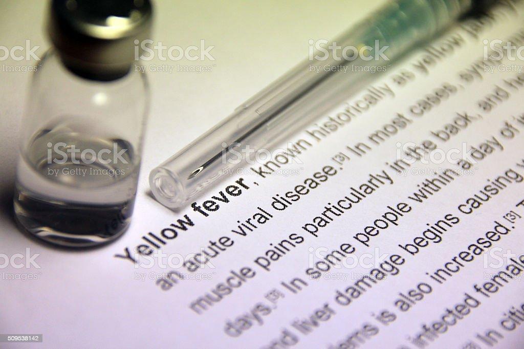 Yellow fever stock photo