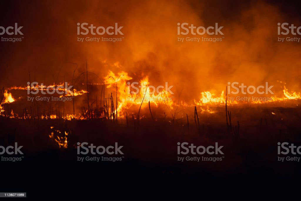 Yellow fire flames with smoke around a place at night stock photo