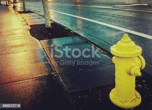 Yellow Fire Hydrant in the Rain