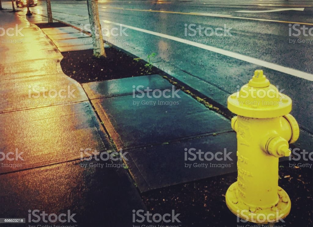 Yellow Fire Hydrant in the Rain stock photo