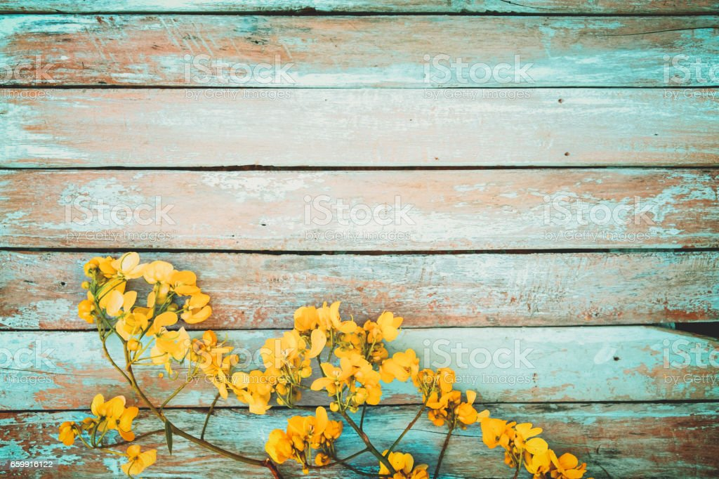 yellow flower with vintage background stock photo