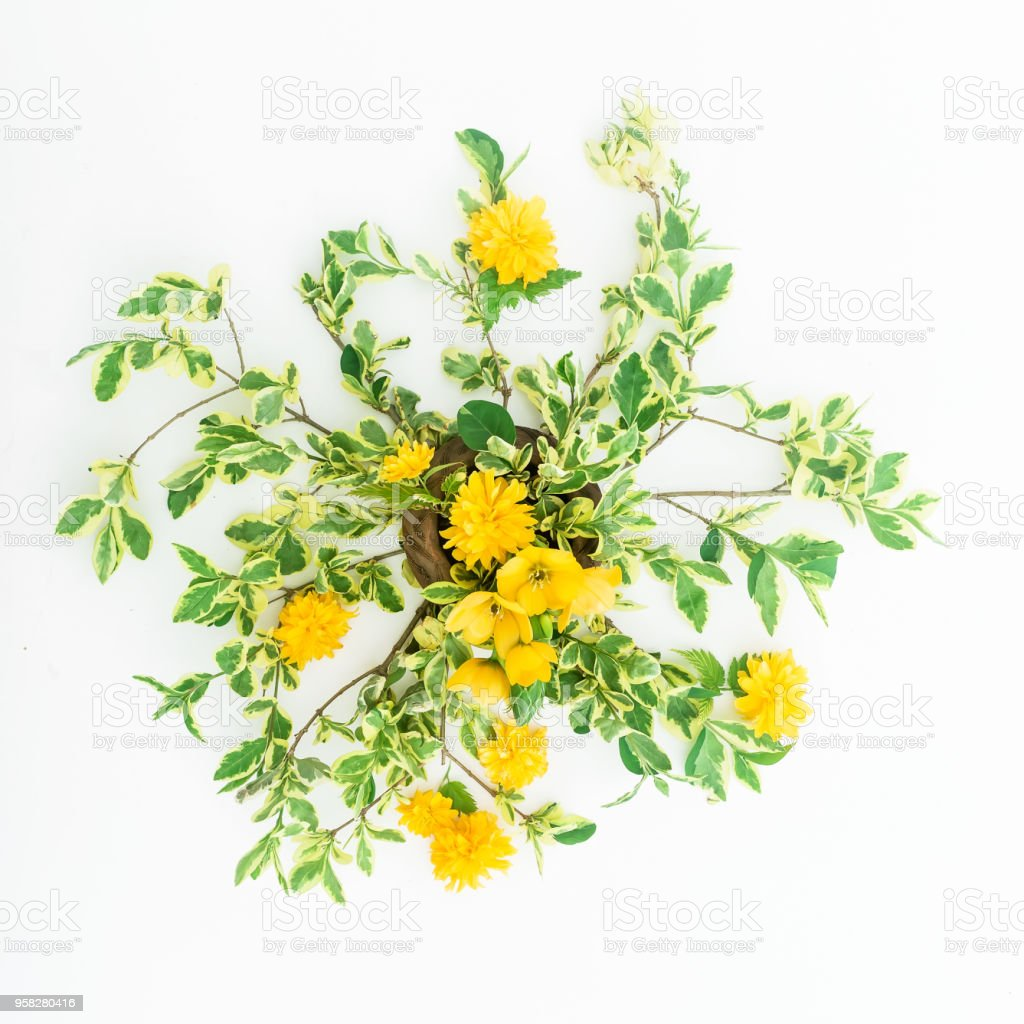 Yellow Flowers And Branches On White Background Flat Lay Top View