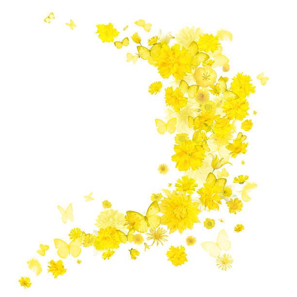 Yellow flowers and butterflies breeze picture id509530178?b=1&k=6&m=509530178&s=612x612&w=0&h=iogbk2qxwgakx69scn4si xteg74pxtylpo7 ttav8g=