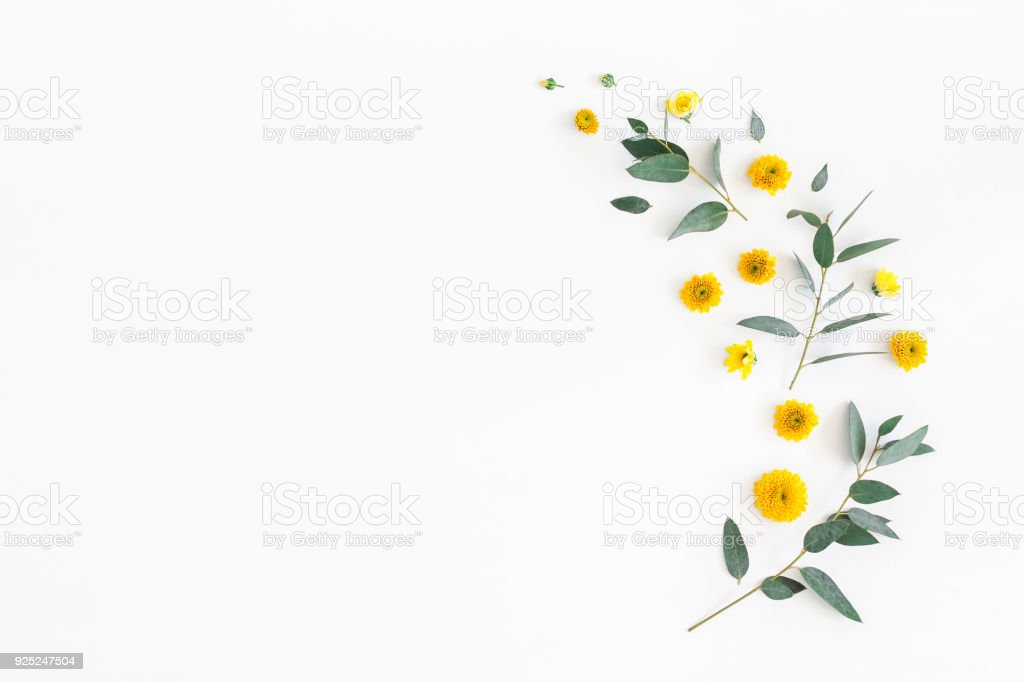 Yellow Flowers And Eucalyptus Leaves Flat Lay Top View Stock Photo