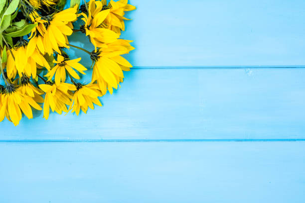 gelbe blumenstrauß auf holzbrettern, blumenrahmen, blauer hintergrund - herbst hochzeitseinladungen stock-fotos und bilder