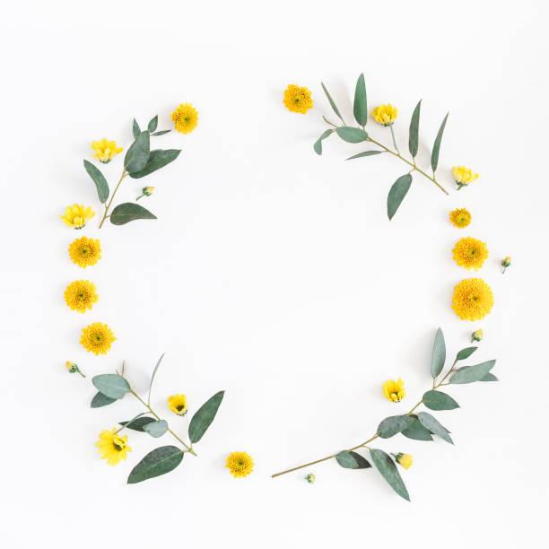 Yellow flowers eucalyptus branches flat lay top view picture id909730072?b=1&k=6&m=909730072&s=612x612&w=0&h=hrzlt26tew3d8s1jqks ssjrwr5hmrcyan2dd7piqe8=