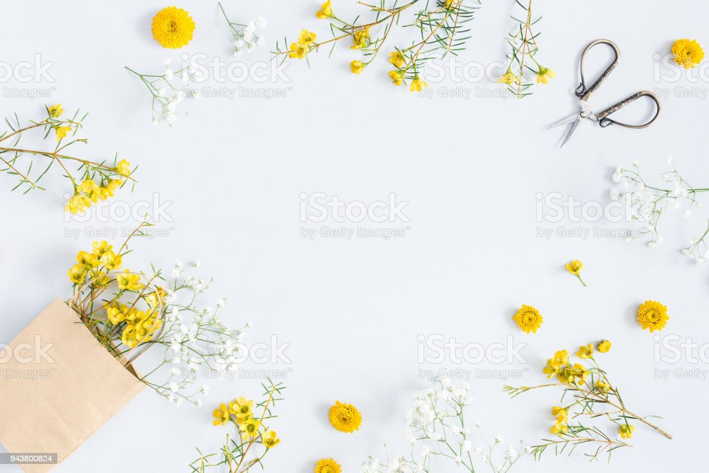 Yellow flowers on pastel blue background flat lay top view stock yellow flowers on pastel blue background flat lay top view royalty free stock mightylinksfo