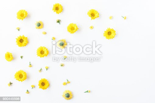 istock Yellow flowers on white background. Flat lay, top view 930445598