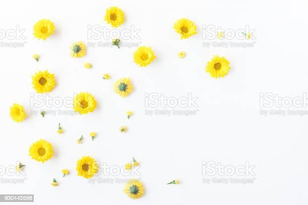 Yellow flowers on white background flat lay top view picture id930445598?b=1&k=6&m=930445598&s=612x612&h=keo2oxnrt puh6cjnkekc xb09zqw5wwqxqfyhi ieu=