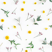 istock Yellow flowers on white background. Flat lay, top view 960847352