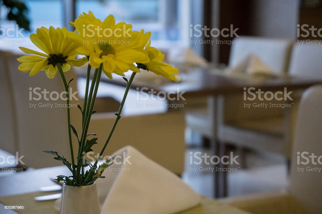 Yellow flowers waiting to be served by guests zbiór zdjęć royalty-free