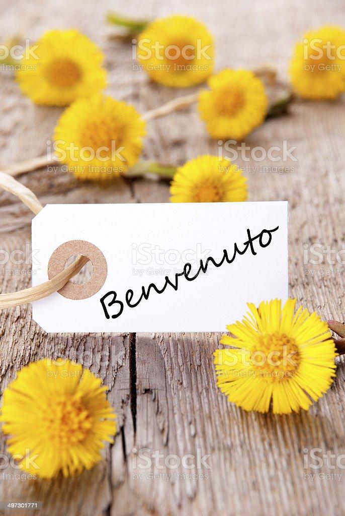 Yellow Flowers with Benvenuto stock photo