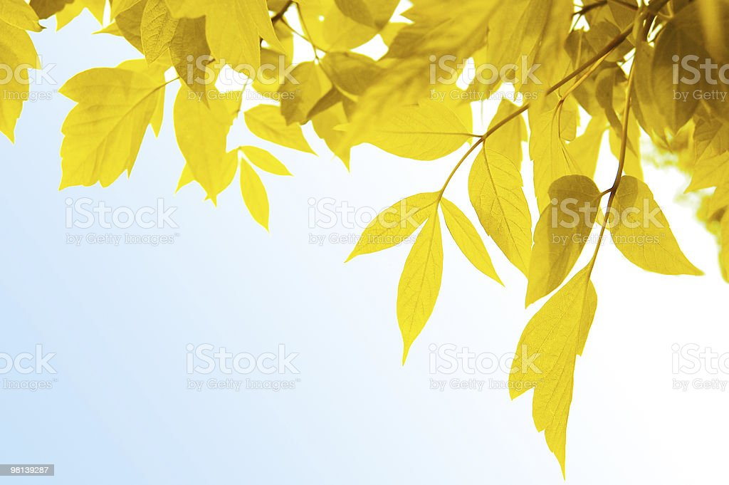 Yellow frame over blue royalty-free stock photo