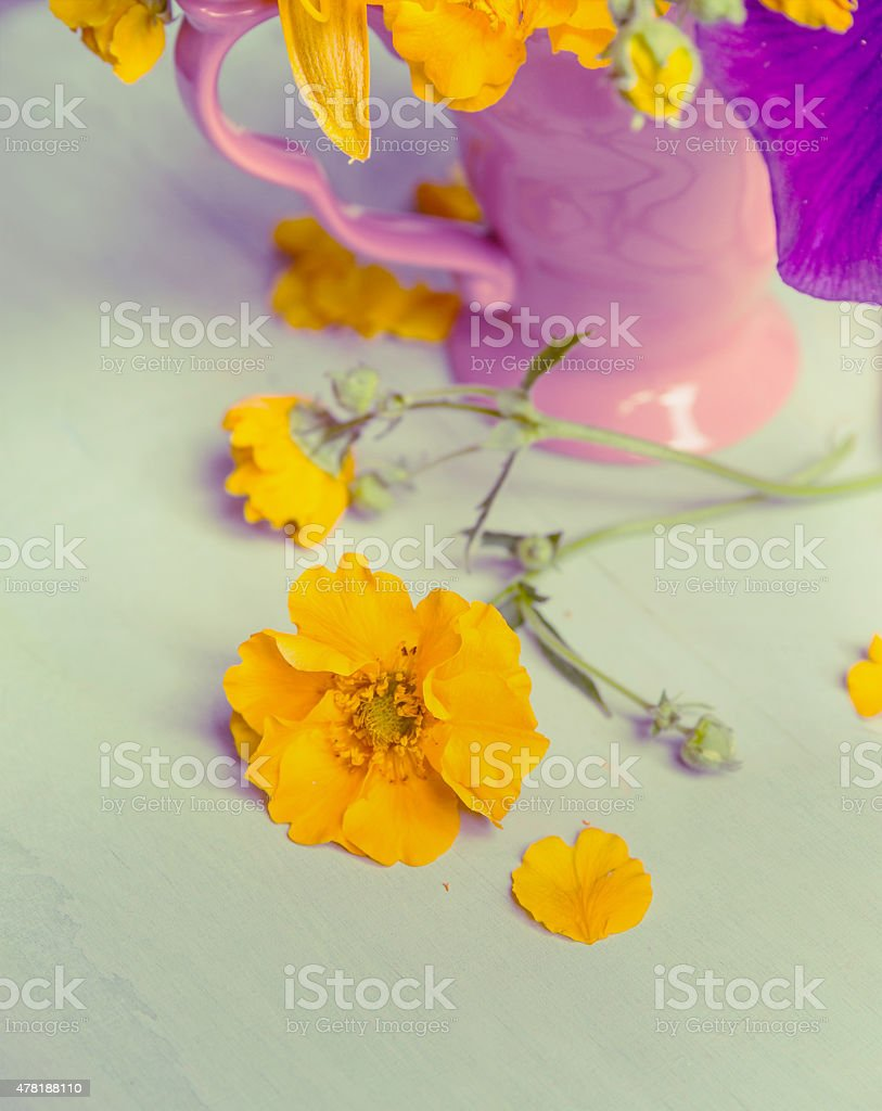 Yellow Garden Flowers And Pink Cup Still Life Toned Stock Photo