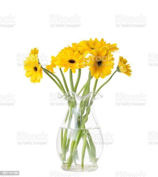 Photo of Yellow Gerber Daisies in vase