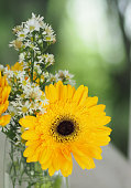 Yellow Gerbera Flower beautiful bouquet in water glass colorful beautiful