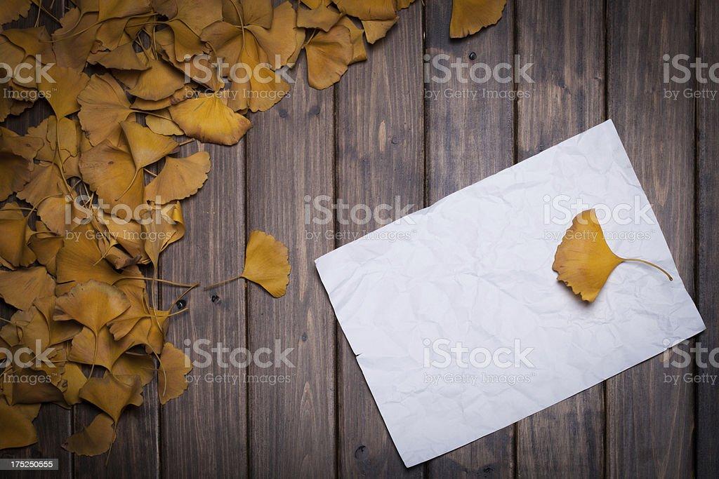 yellow  gingko leaf royalty-free stock photo