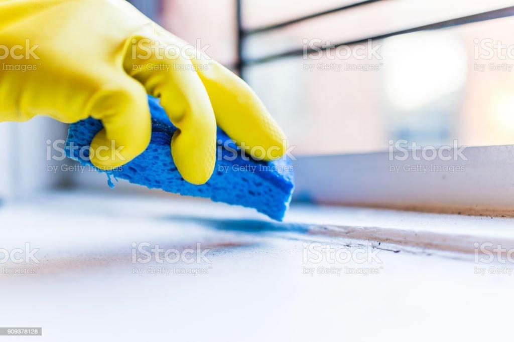 Mão de luvas amarelas, limpar o pó, sujeira no peitoril da janela com esponja azul pela janela no apartamento urbano na cidade de Nova York NYC - foto de acervo