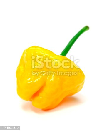 Yellow Habanero chili on white