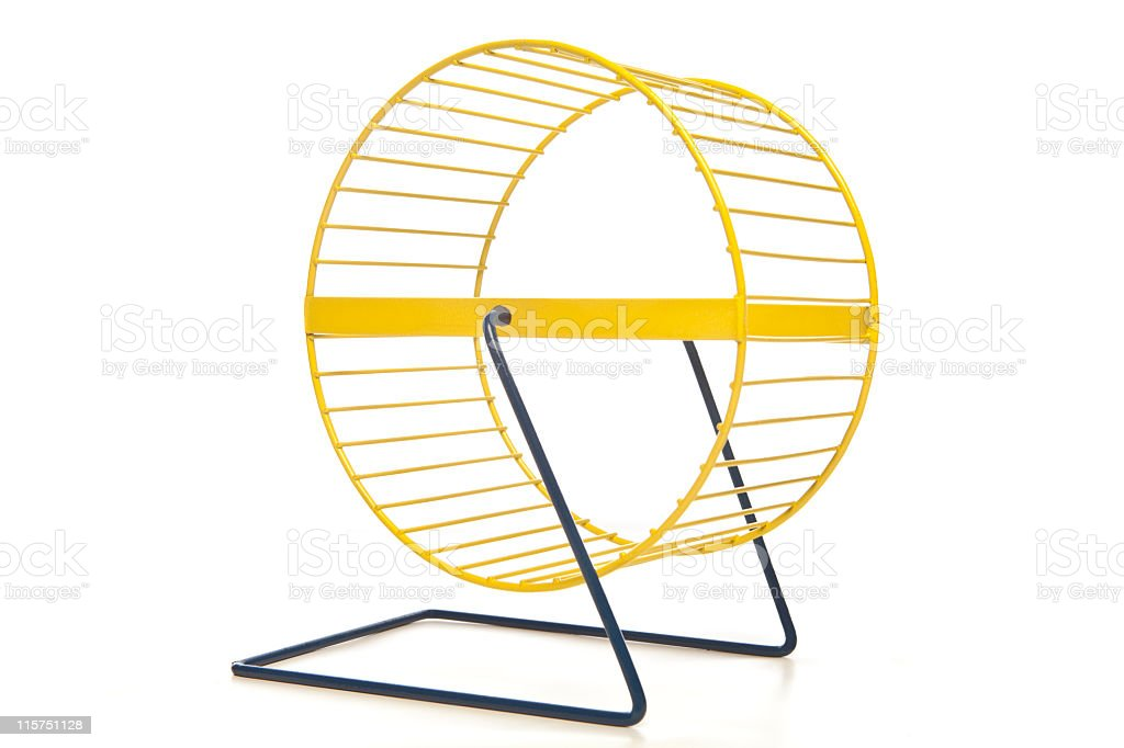 Yellow hamster wheel isolated on white. stock photo