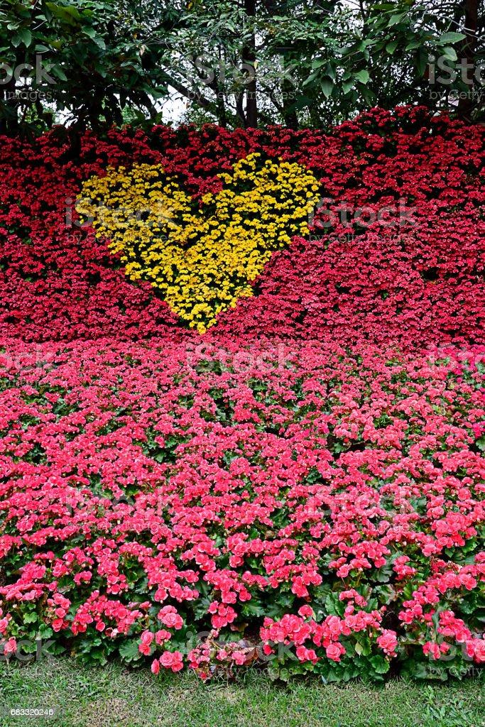 Yellow heart royalty free stockfoto