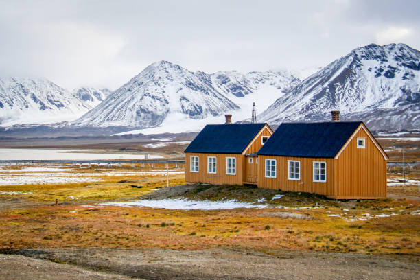 Yellow houses on yellow tundra grass in Svalbard stock photo
