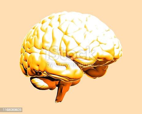 istock Yellow human brain illustration isolated on vanilla BG 1168089625