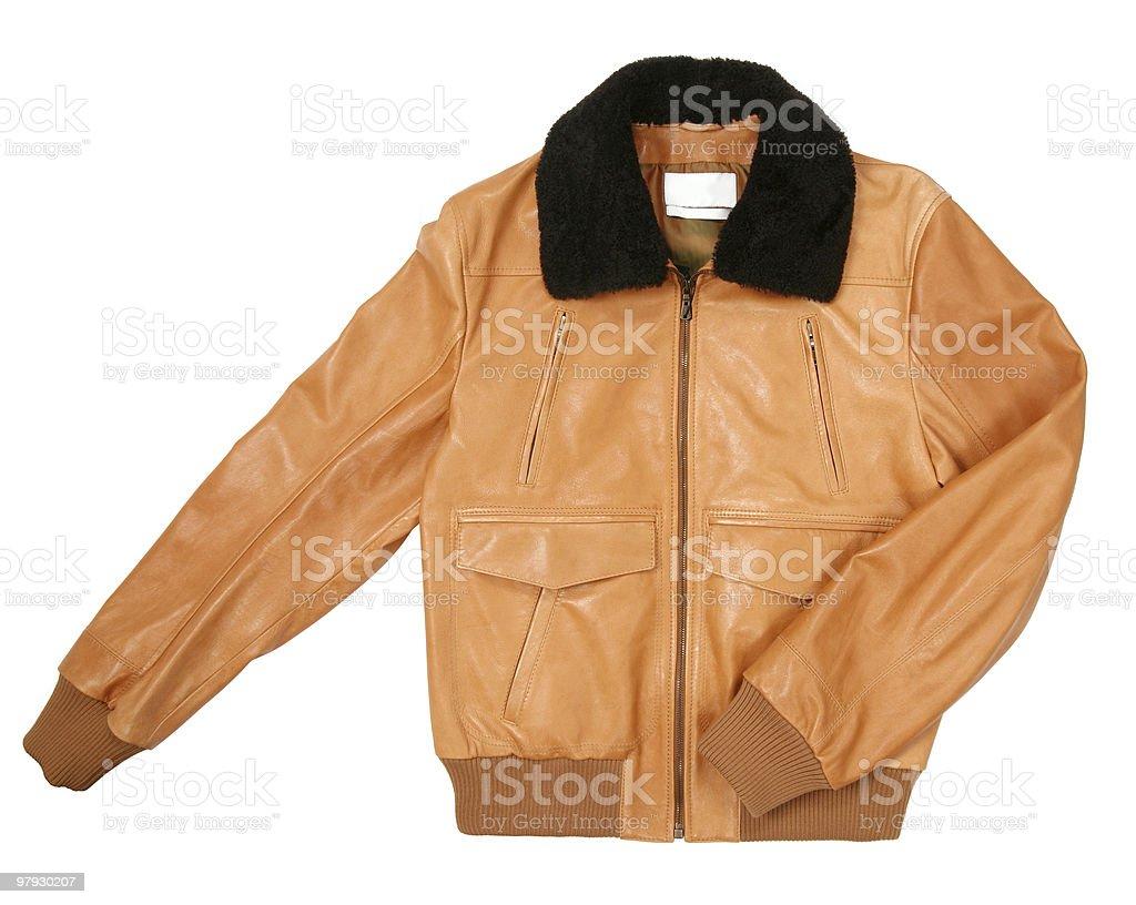 Yellow jacket royalty-free stock photo
