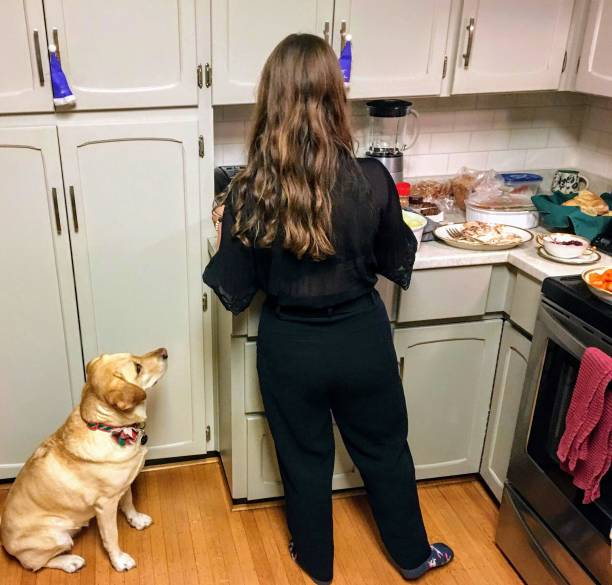 A yellow lab mooching for food during dinner A young woman making turkey dinner in the kitchen with her pet yellow lab sitting by her feet begging for food. thanksgiving pets stock pictures, royalty-free photos & images