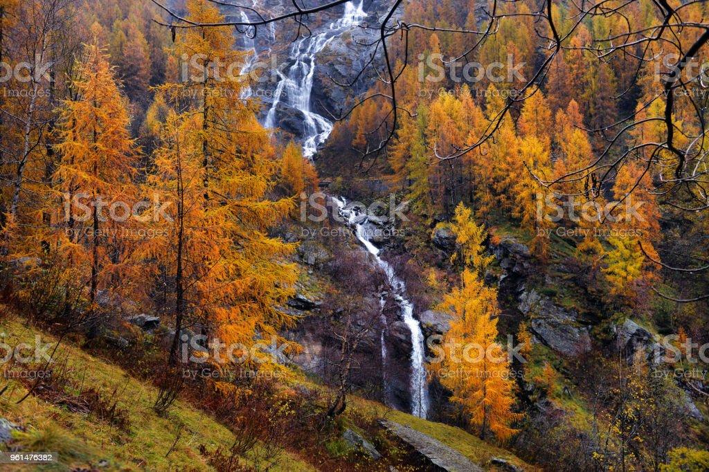 amarillo alerce y cascadas en los Alpes otoñales - foto de stock