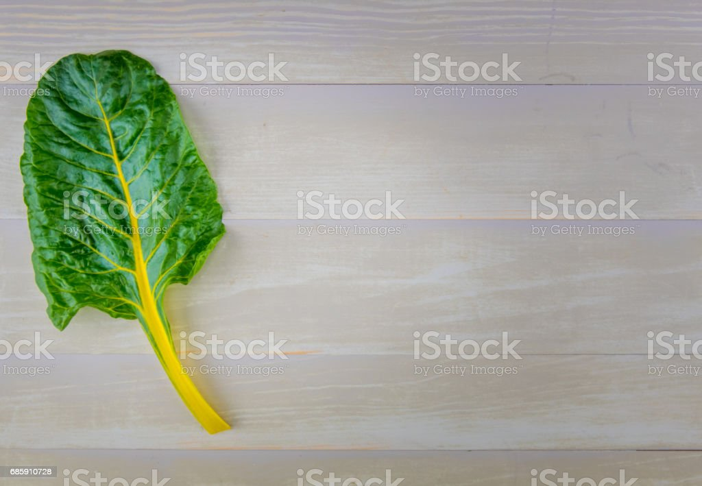Yellow Leaf of Rainbow Chard with Copy Space to Right stock photo
