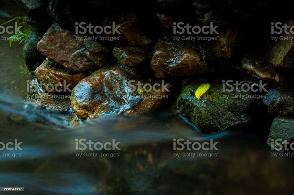 A yellow leaf on the rock with waterfall  in dark low key and long exposure with copy space 免版稅 stock photo
