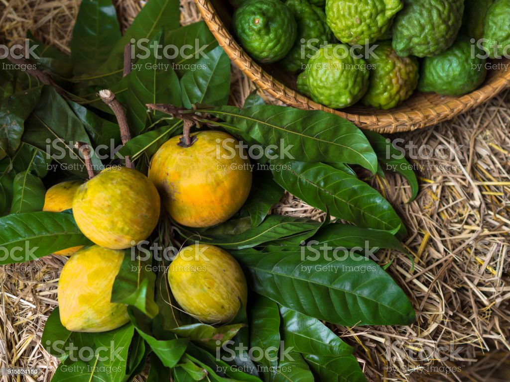 Yellow lemon, green bergamot and green leaves on wooden table and straw in an organic market for fresh, juicy, vitamin and healthy food and fruits stock photo