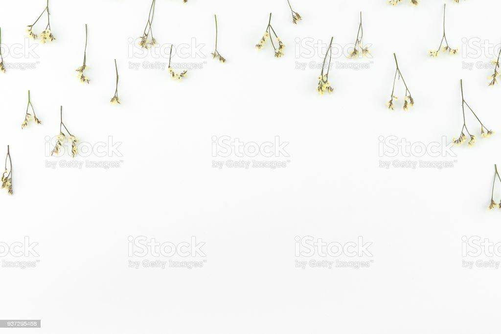 Yellow limonium caspia flowers pattern stock photo