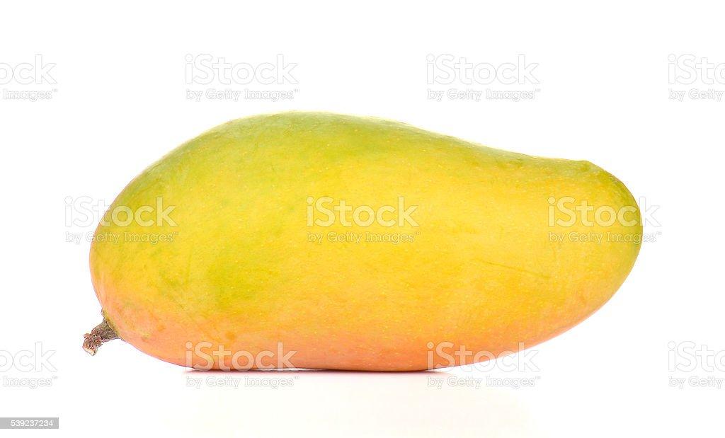 Yellow mango full ball on white background. royalty-free stock photo