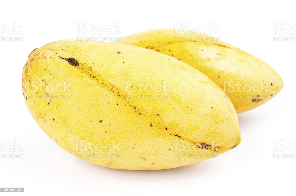 Yellow mango royalty-free stock photo