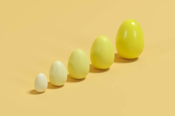 Gelbe Monotone Eier in verschiedenen Größen auf gelbem Hintergrund. Minimale Osteridee. – Foto