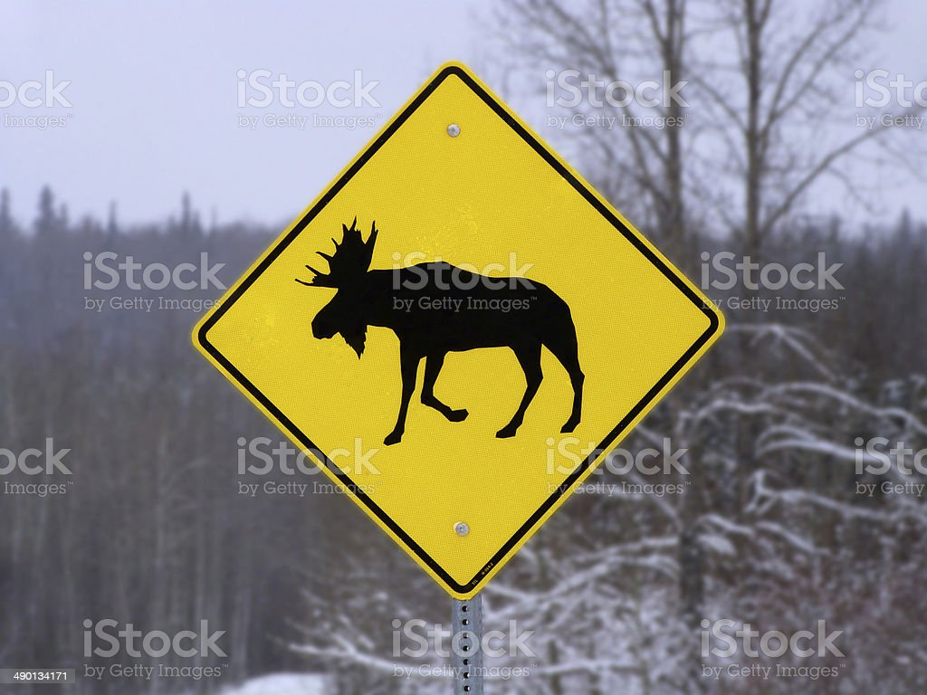 yellow moose crossing sign road traffic safety highway travel