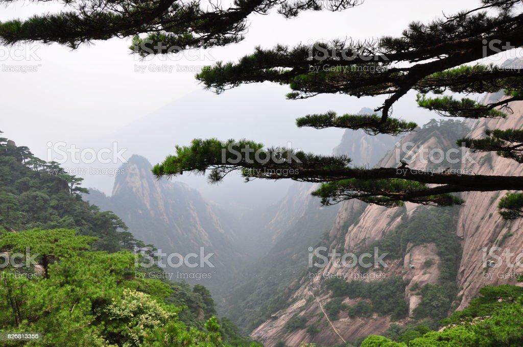 Yellow Mountain stock photo