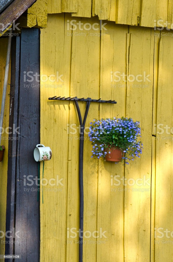 yellow old barn wall with rake and flower vase stock photo