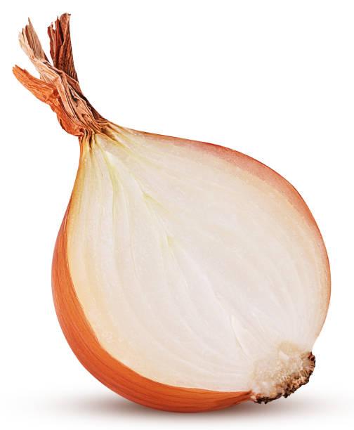 Yellow onion bulb cut in half stock photo
