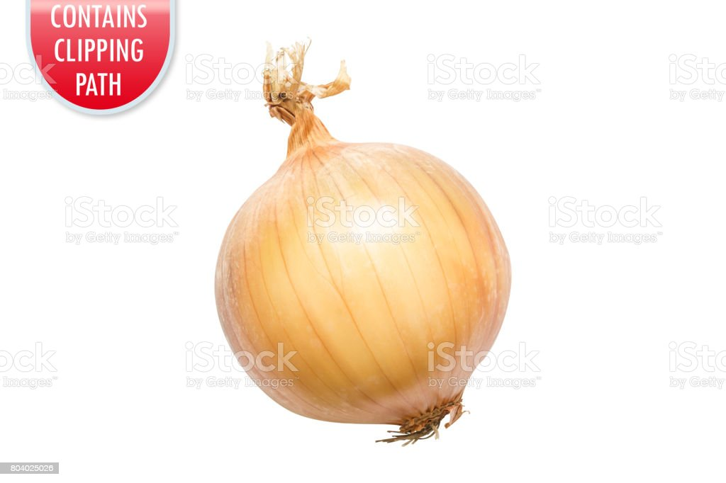 Yellow onion isolated on white with clipping or working path stock photo