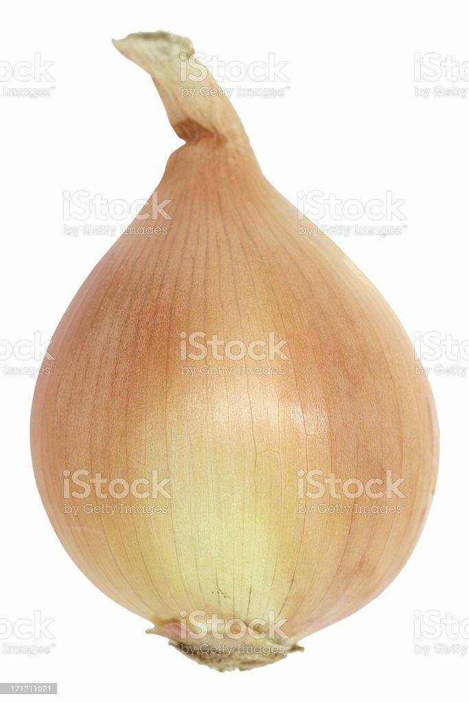 yellow onion royalty-free stock photo
