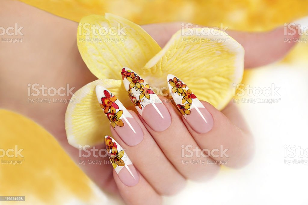 Yellow orchids. stock photo